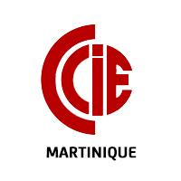 logo_ccie